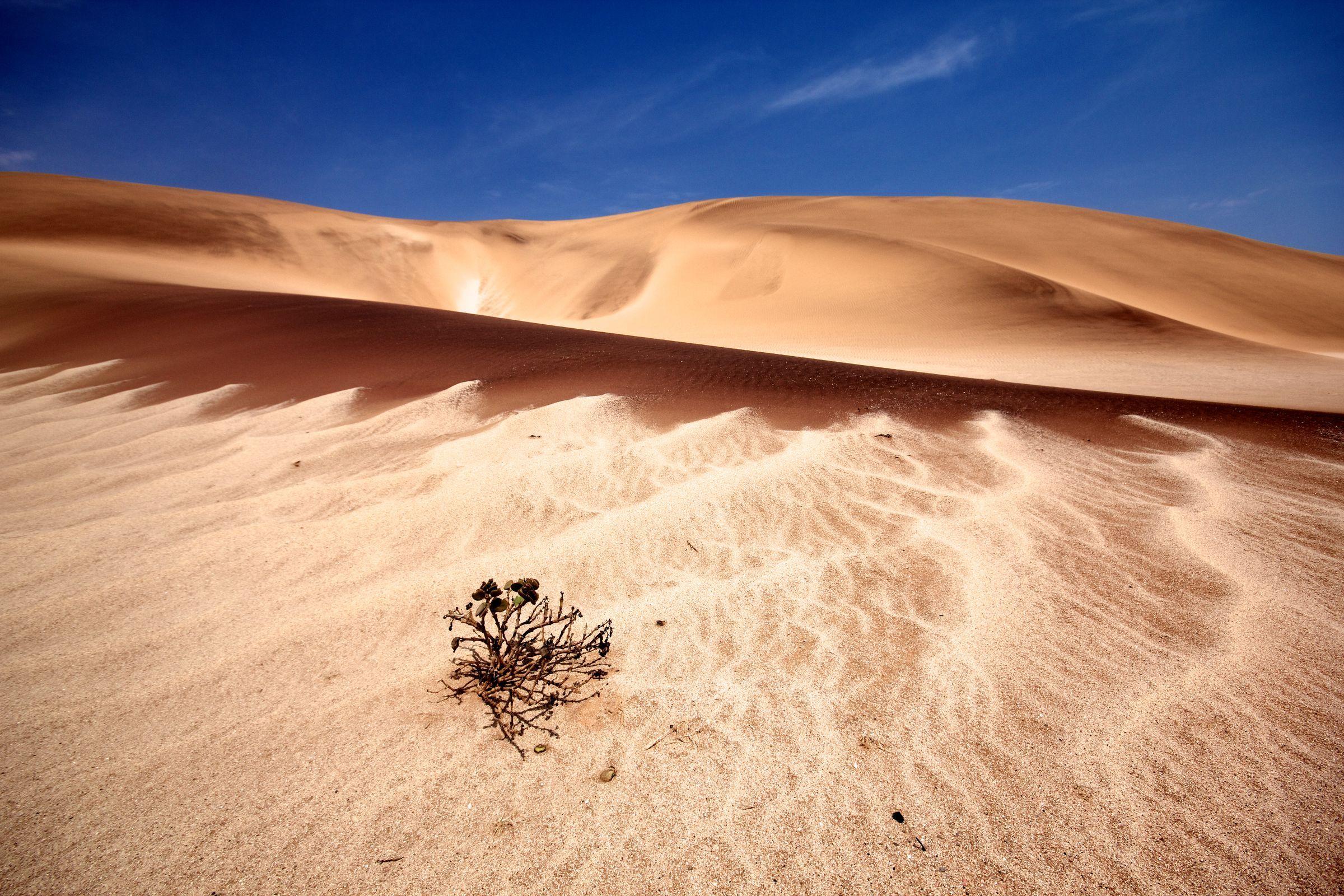 Garnet sand dunes in Dorrob National Park, Namibia